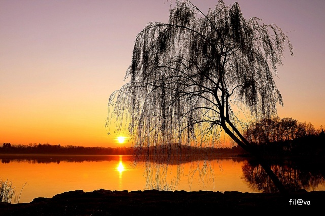 Un sereno tramonto