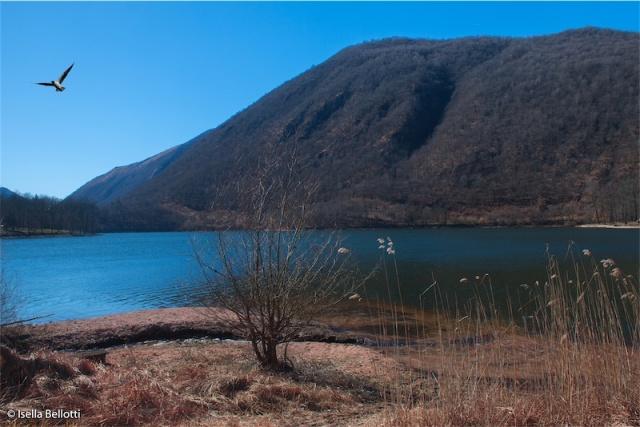 Azzurro Lago