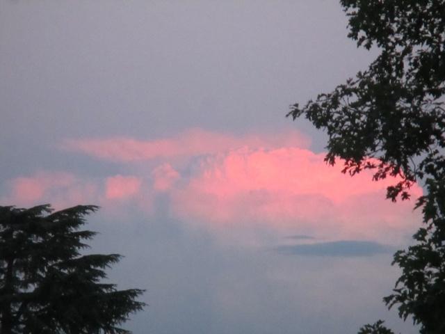 Nube rosa