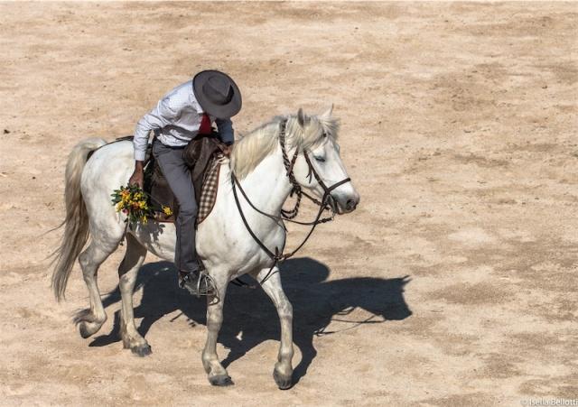 Romantico cowboy
