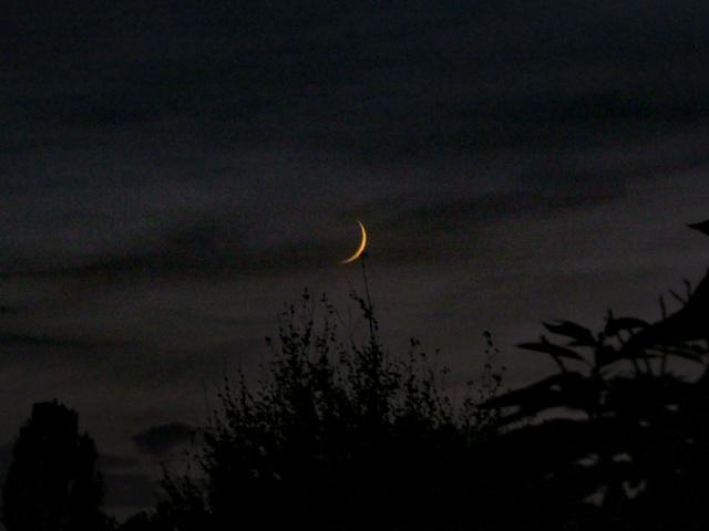 Bentornata luna!